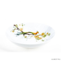 Тарелка суповая PARADISE BIRD 21см арт.DM9001