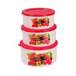 Набор емкостей Смак-ягоды 0,5л;0,7л;1л М2137
