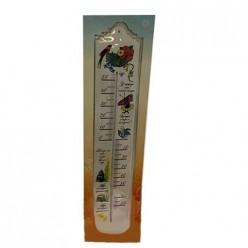 Термометр фасадный большой ТБ-45, в блистере